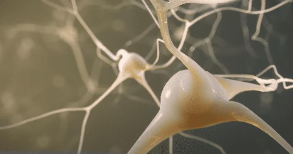 Хирургия эпилепсии. Радикальное решение проблемы